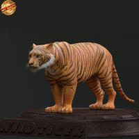 tiger wild 3d model