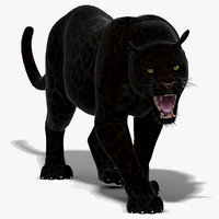 3d black panther animation
