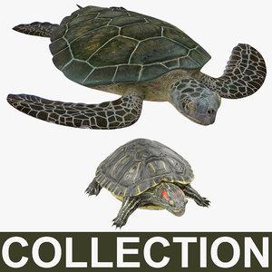 turtles modeled slider sea 3d model