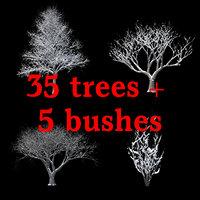 winter tree bush 3D model