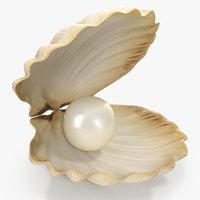 sea shell pearl 3D model
