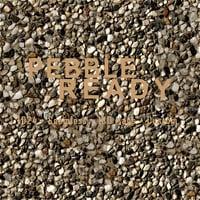 1k Pebble Ready