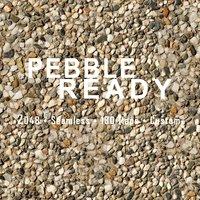 2K Pebble Ready