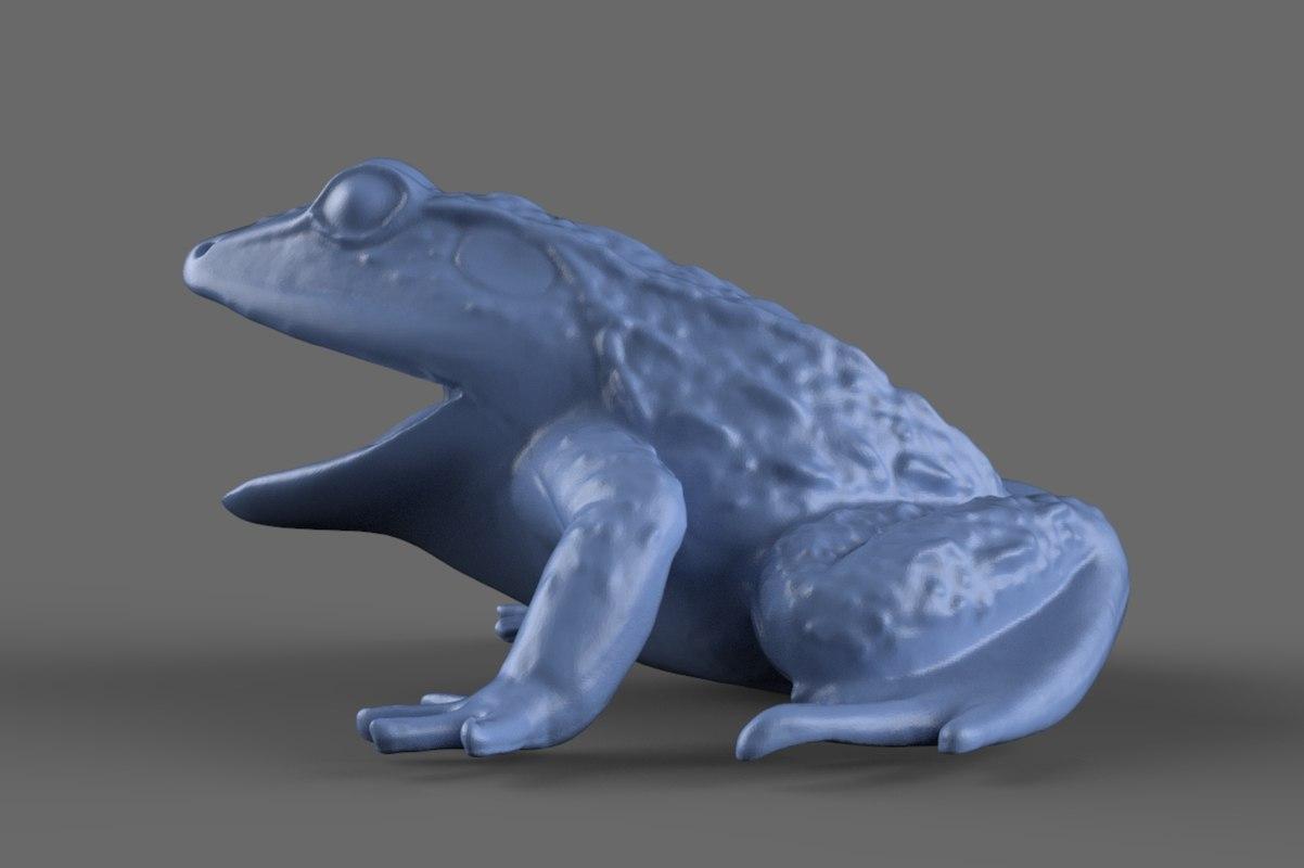 3d model scan frog toy