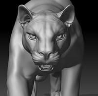 cougar 3D model