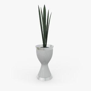 concept trifasciata 3D