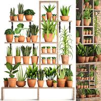 3D model plants clay pots
