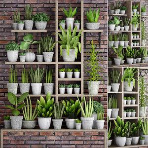 plants concrete pots 3D model