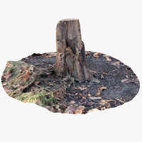 oak stump 2 3D model
