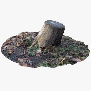 3D oak stump 10 model