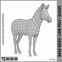 mesh zebra animal anatomy 3D model