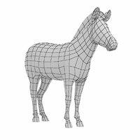 mesh zebra animal anatomy 3D model