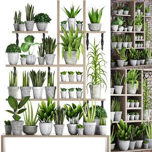 3D plants concrete pots 2 model