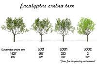3D landscape trees