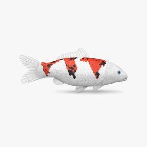 3D koi fish model