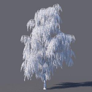 frozen birch model