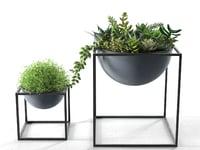 3D kubus bowls plants