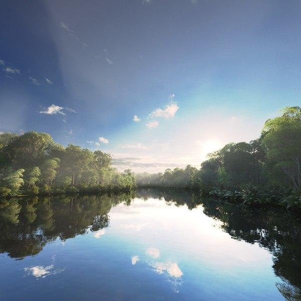 3D scene amazon river model