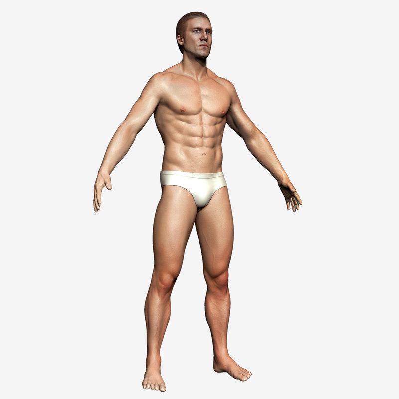 3D male body basemesh model