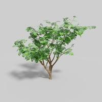 Tree Lowpoly