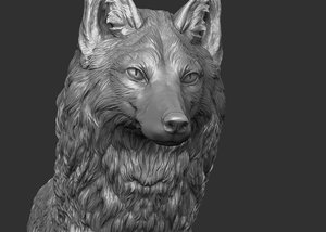 3D fox wildlife mammal