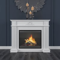 electric fireplace dimplex model