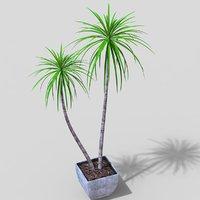 3D model tropical plant