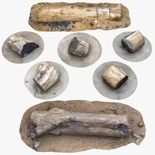 3D model rustic stumps n logs