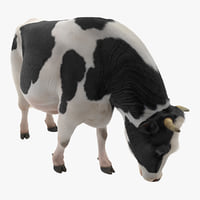 Dairy Cow Eating Pose with Fur 3D Model