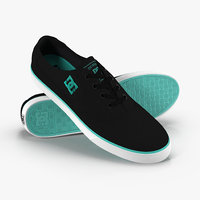 dc shoes - flash 3D model