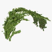 3D model ivy