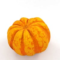 3D pumpkin squash