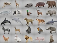 Ultimate Animal Collection