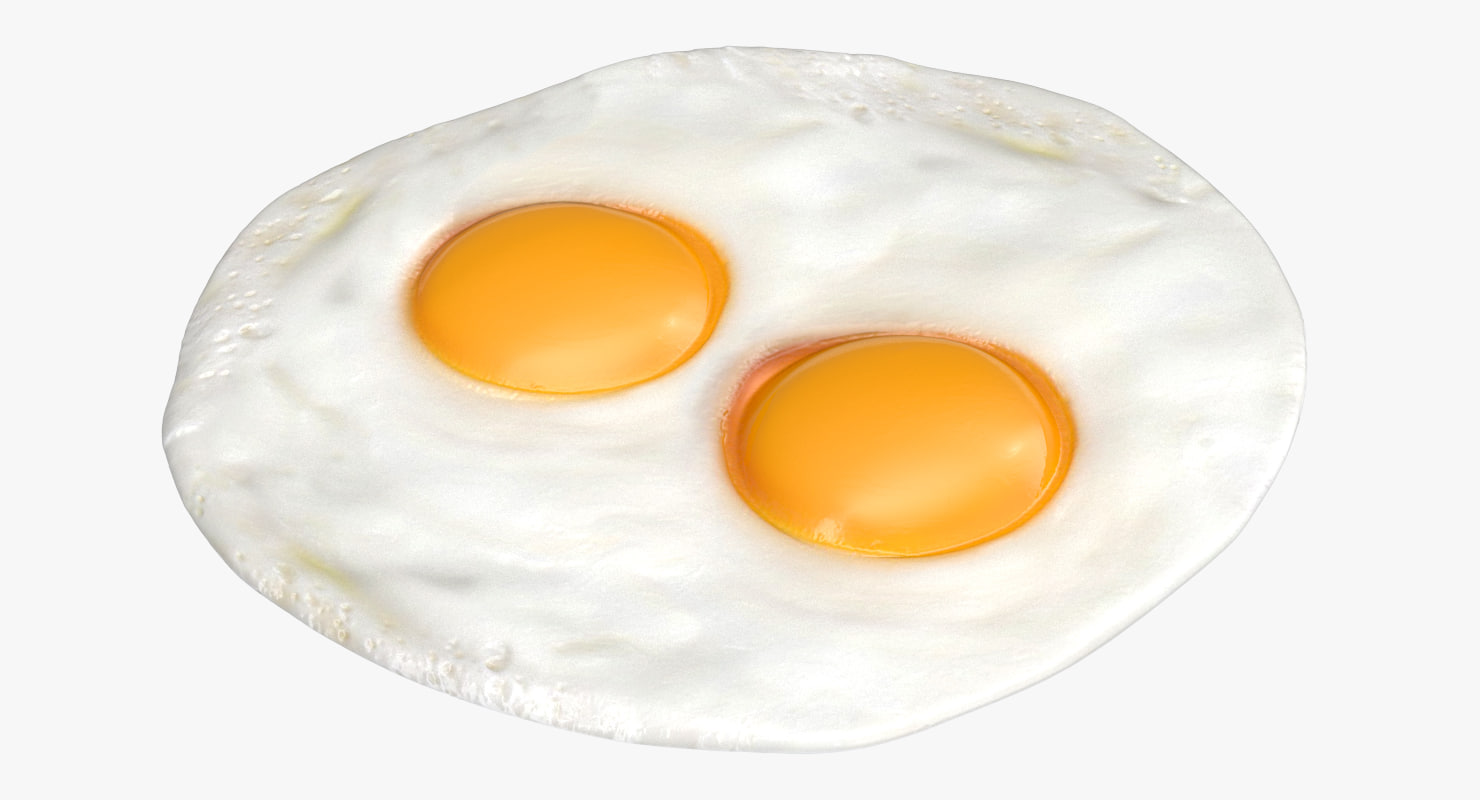 fried eggs model