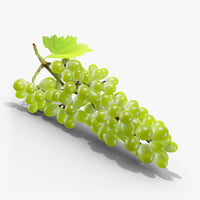 3D green grapes