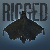 Shroud Beast (Rigged)