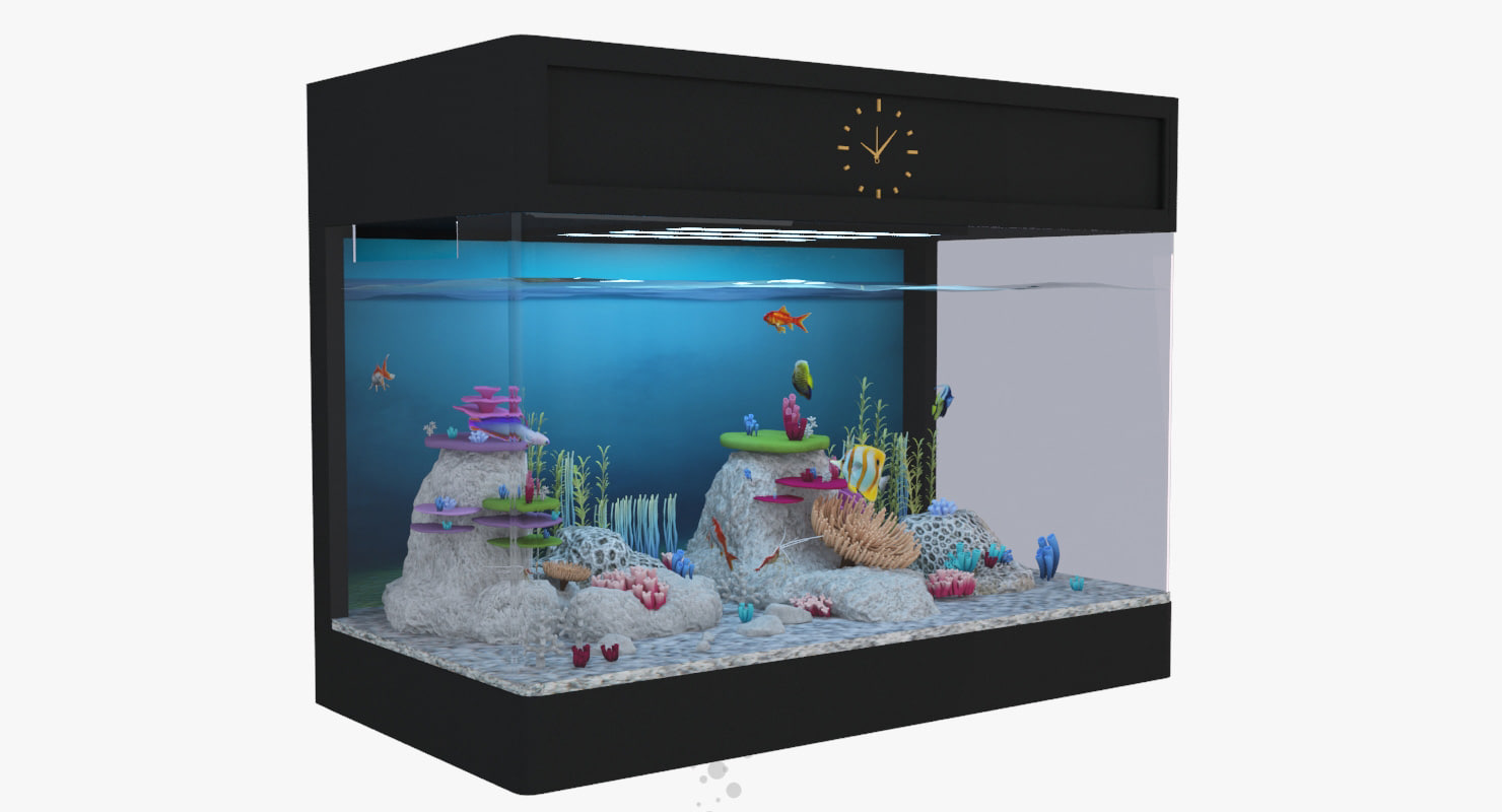 3D model aquarium fish box