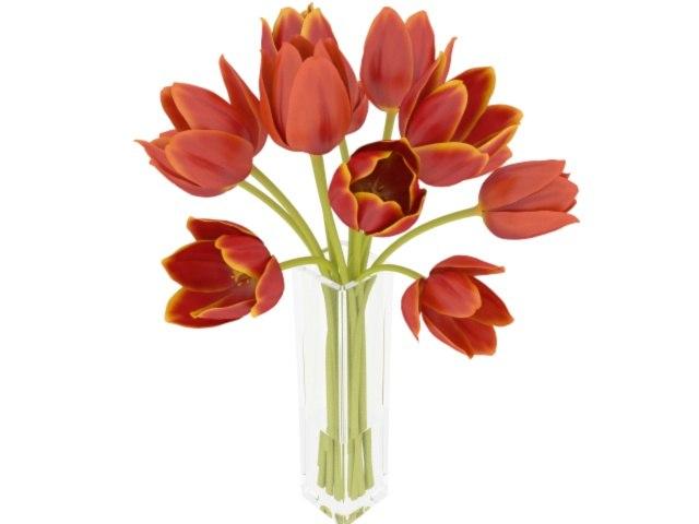 3D realistic tulip bouquet