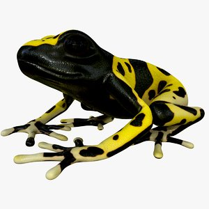 3D realistic yellow-banded poison dart