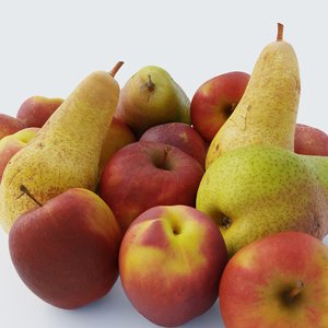 apples fruits model