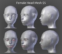 Female Head Model