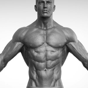 fitness realistic 3D model