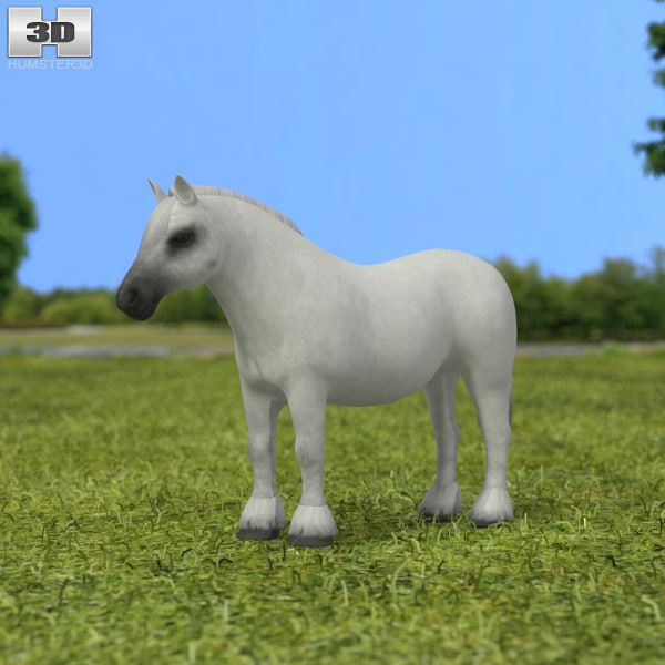 3D pony model