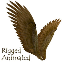 3D fantasy wings model