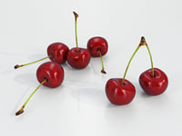 Cherry Fruit - High Poly - Low Poly