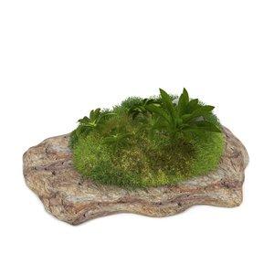 3D model stone moss