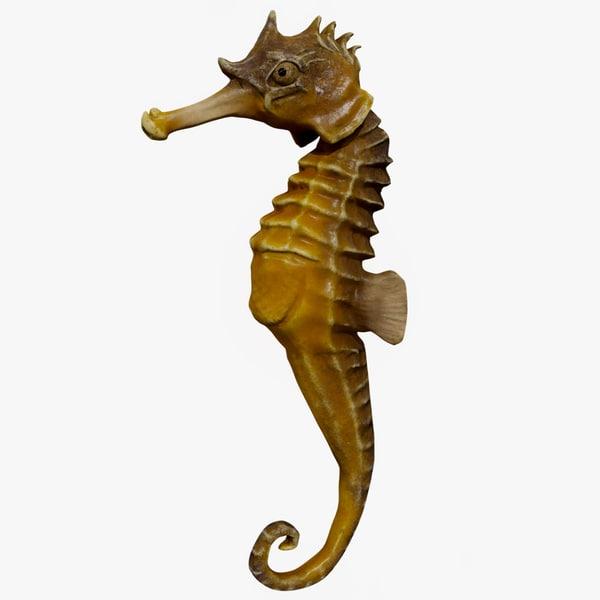 3D ready seahorse