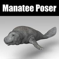 3D manatee animal