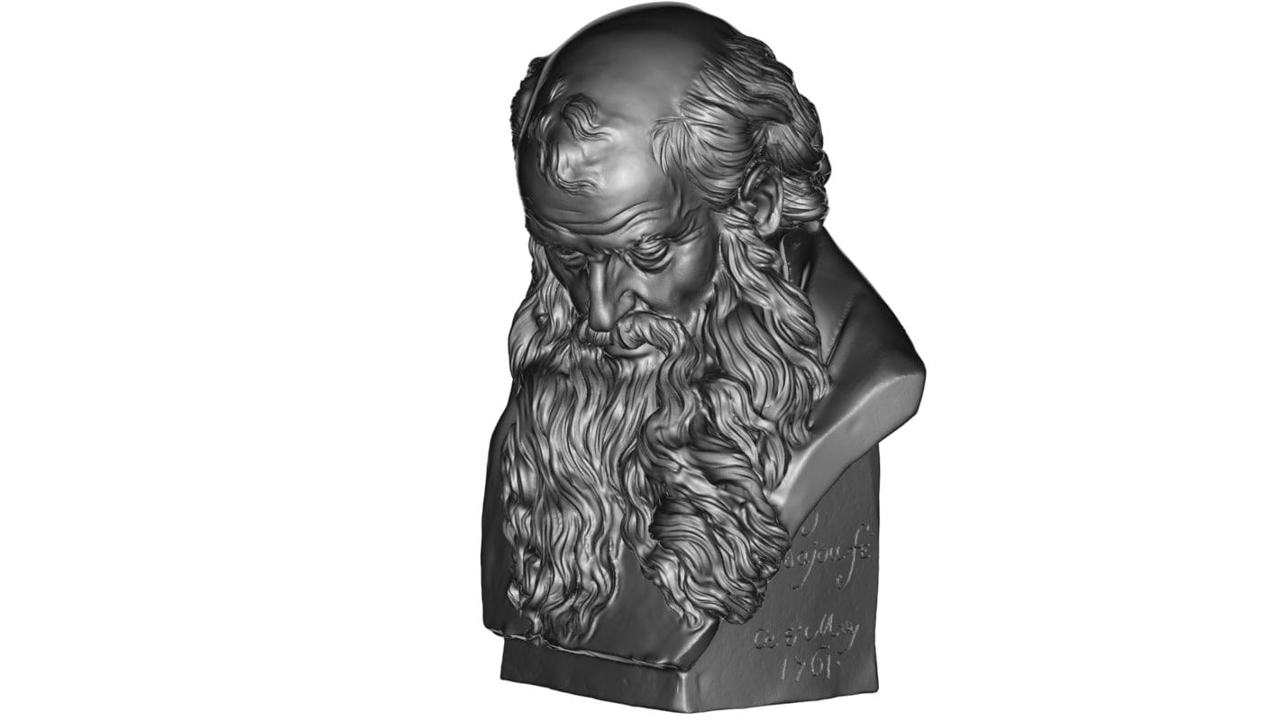bearded man 3D