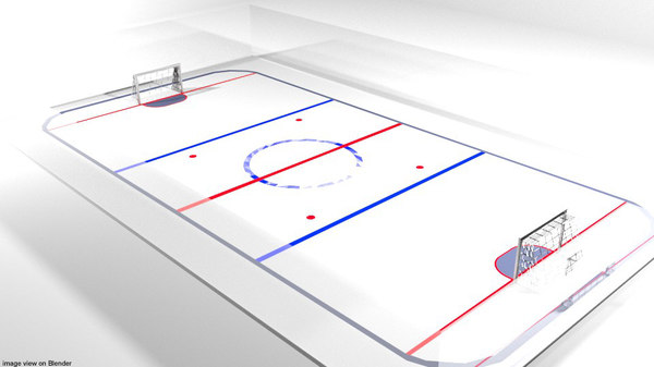 court hockey ice model